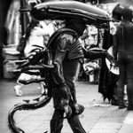 """The Alien • <a style=""""font-size:0.8em;"""" href=""""http://www.flickr.com/photos/30293025@N06/36568742966/"""" target=""""_blank"""">View on Flickr</a>"""